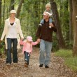 physical activity benefits of a walk